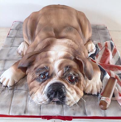 British bulldog cake sculpture  - Cake by Helen35