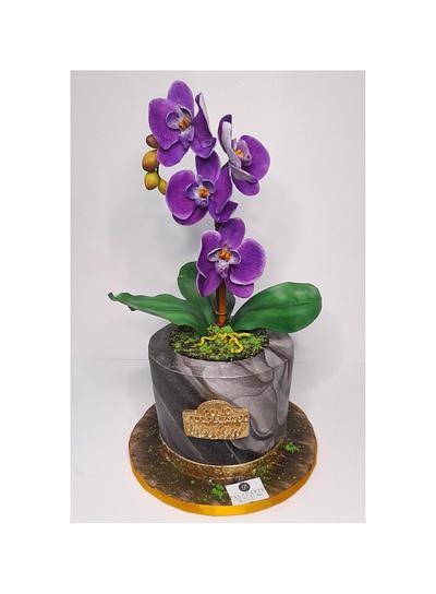Orchid pots cake  - Cake by Paladarte El Salvador