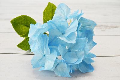 Blue Hortensia - Cake by Catalina Anghel azúcar'arte