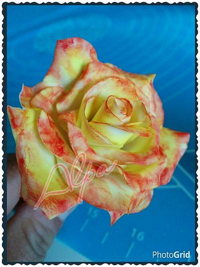 my two toned rose - Cake by Alpa Jamadar