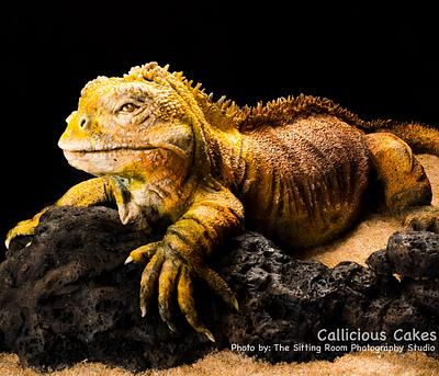 Land Iguana of The Galapagos  - Cake by Calli Creations