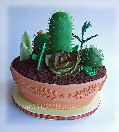 Cactus / Succulant plant cake - Cake by CuriAUSSIEty  Cakes