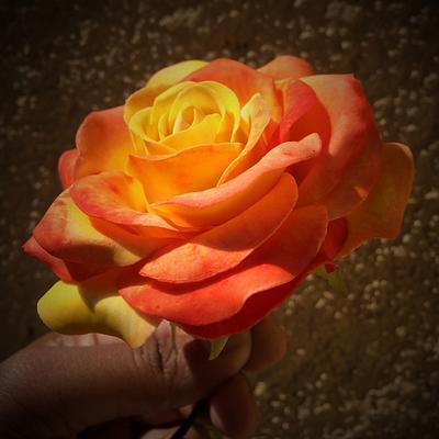 Sugar roses - Cake by Susanna Sequeira