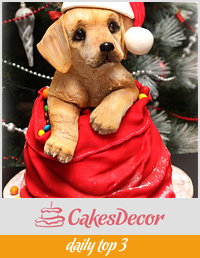 3Д cake labrador puppies in a bag of gifts)))