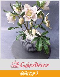 Hellebores - Cake International Silver Award