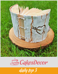 Wedding guest book  cake