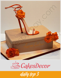 Stiletto Shoe and Box Birthday Cake