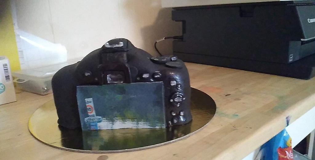 camera cake by WitchyCaker