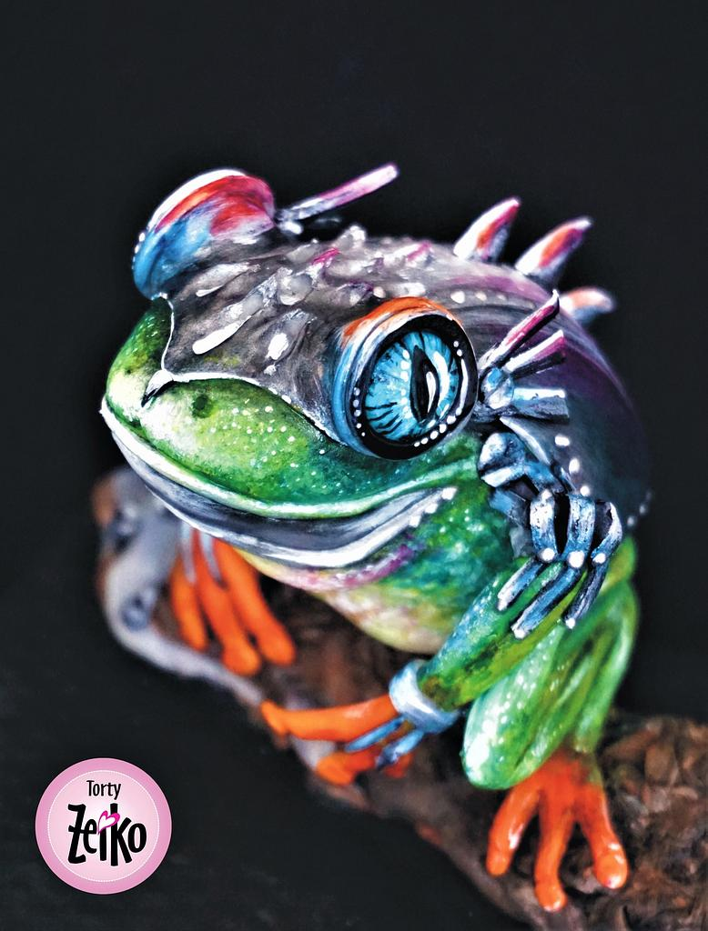Fancy Frog Collaboration - Steel Frog by Torty Zeiko