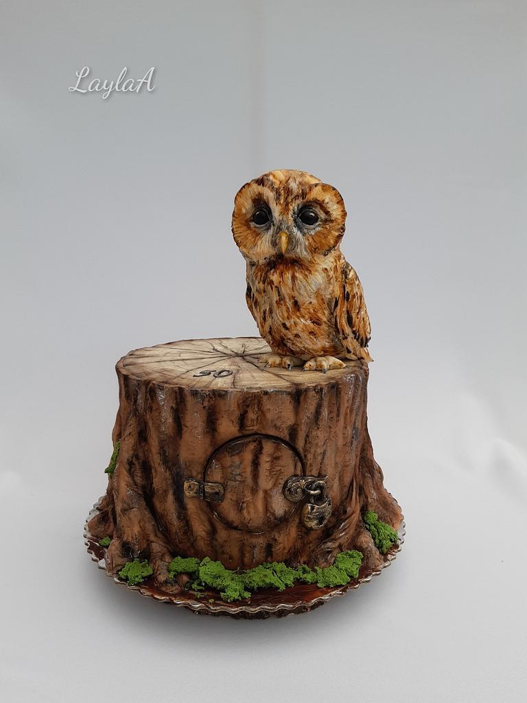 Owl cake by Layla A