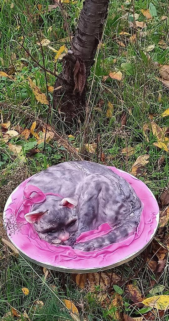 Cake 3d Cat by Ewa
