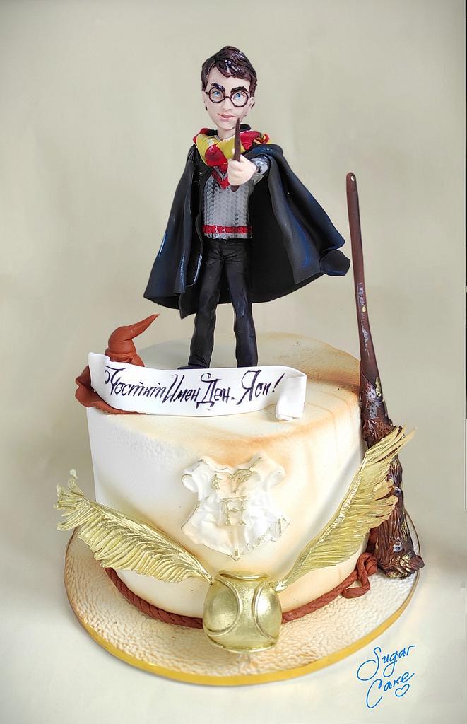 Harry Potter by Tanya Shengarova