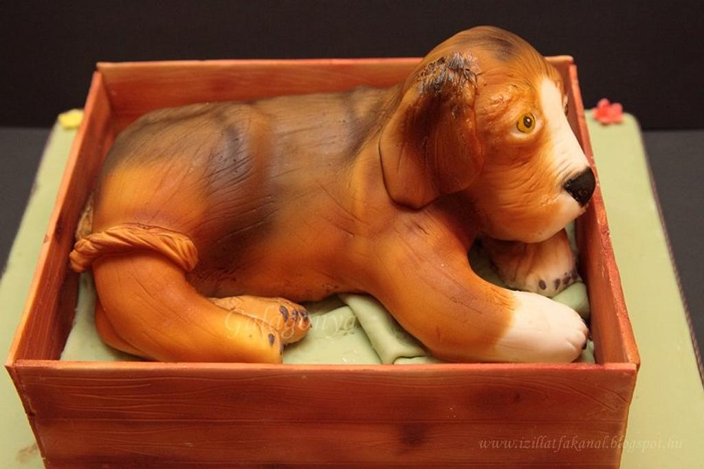 3D doggy cake by Galagonya