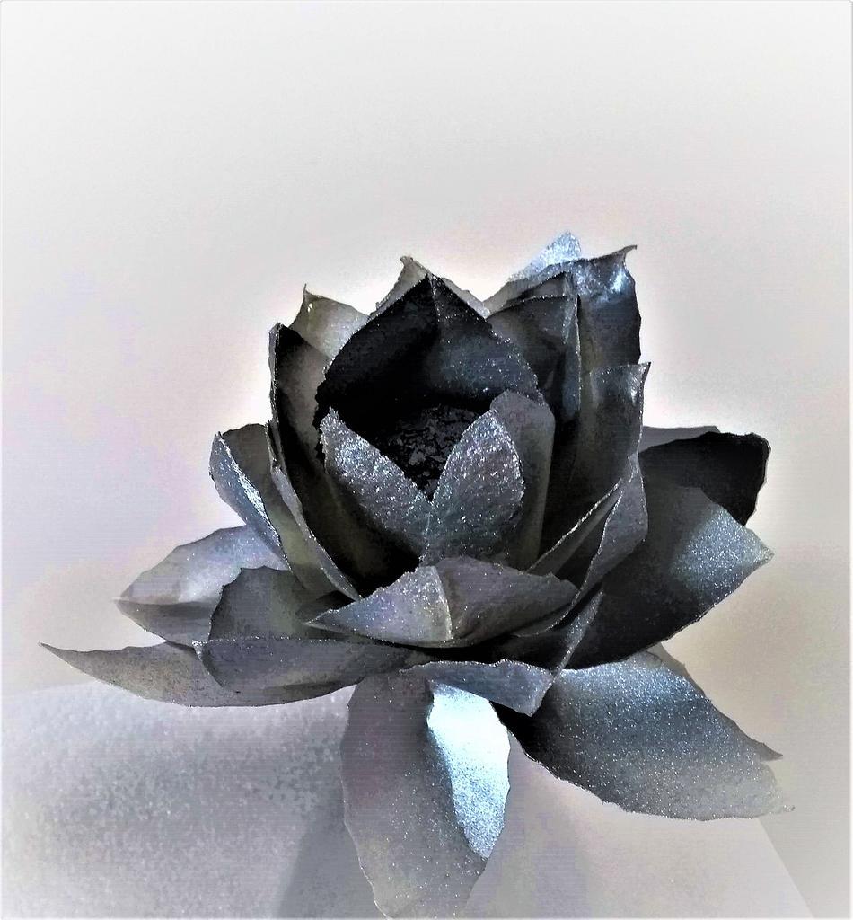 Iron flower by Clara