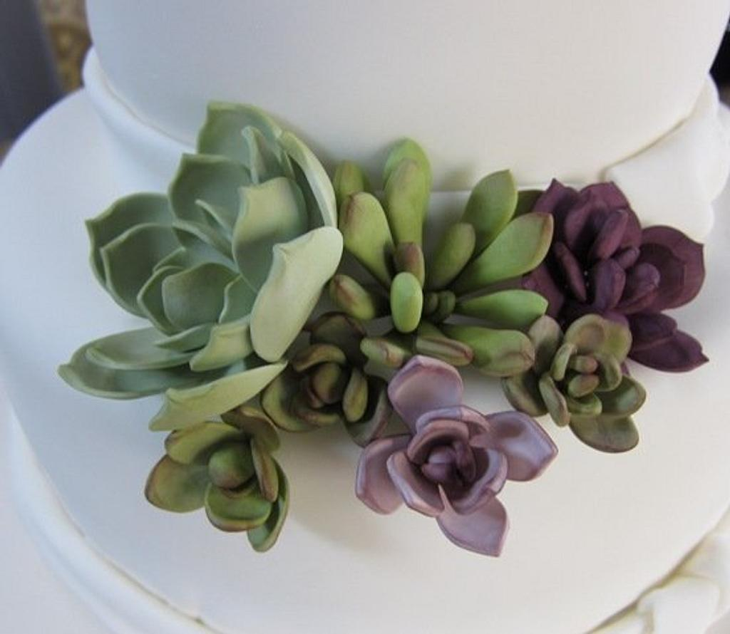 Sugar Succulents by Petalsweet