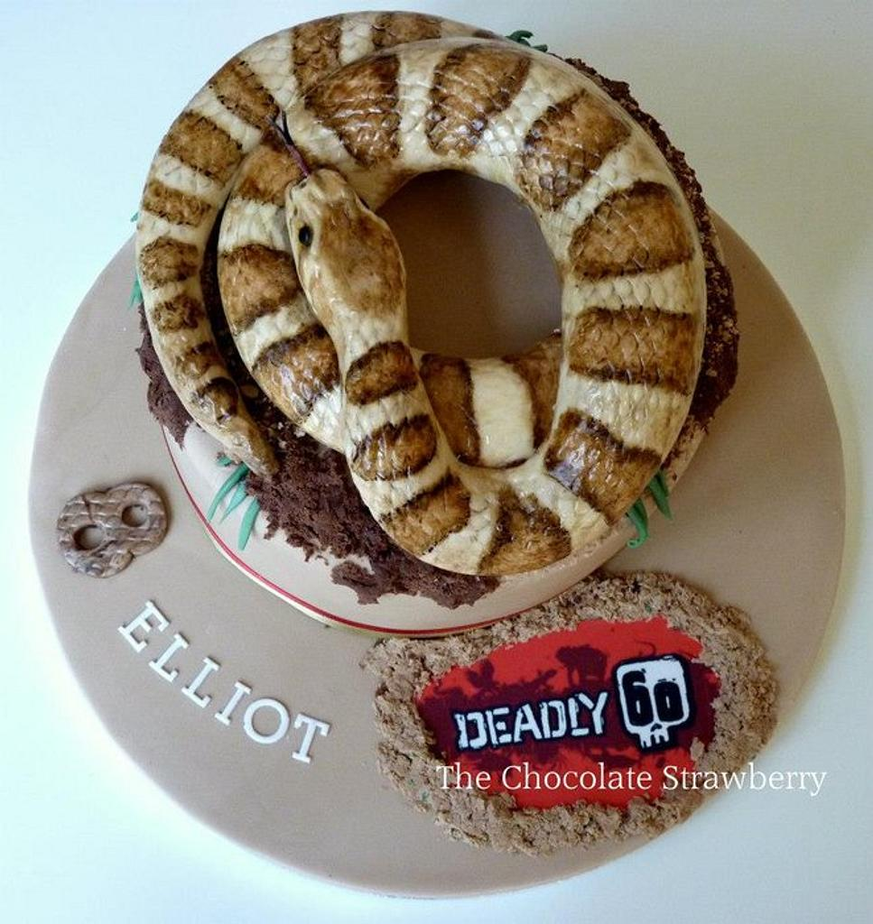Snake Cake by Sarah Jones