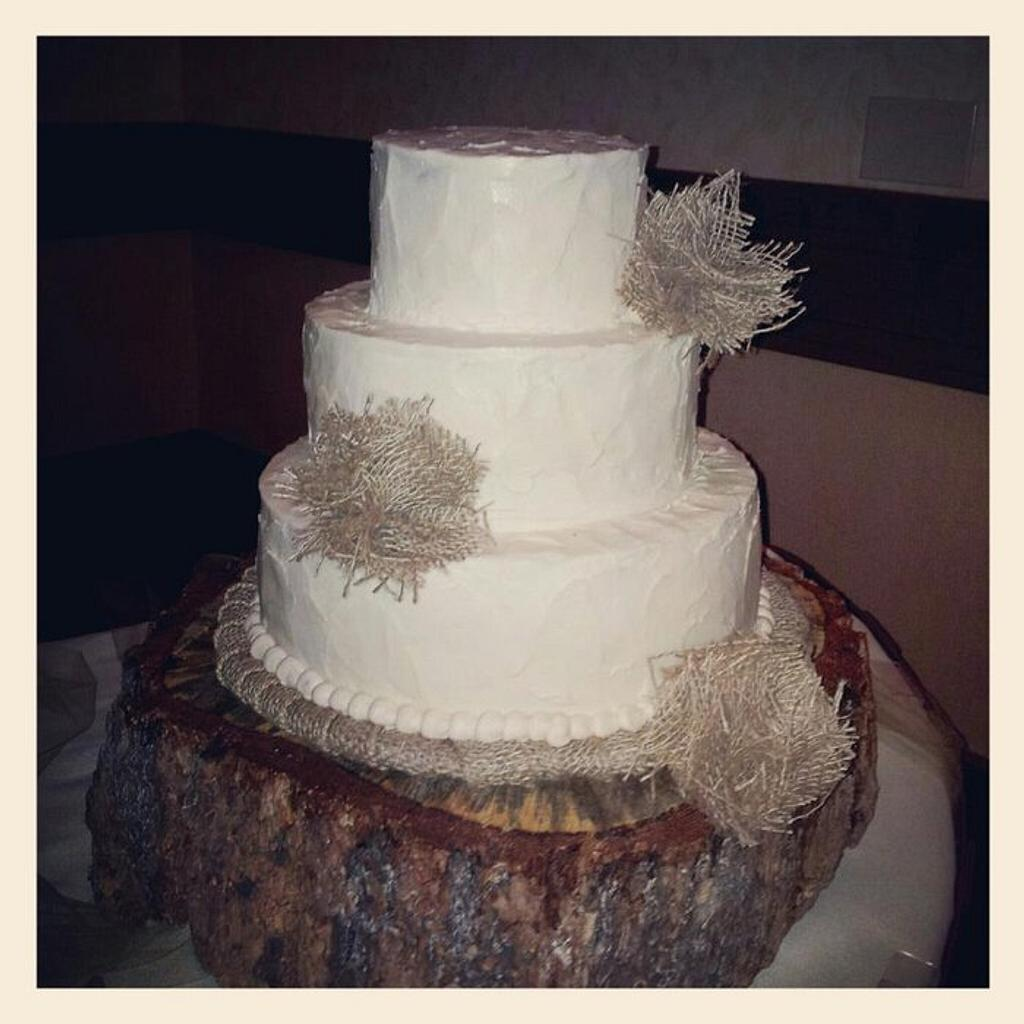 Wyoming Wedding by lizscakes