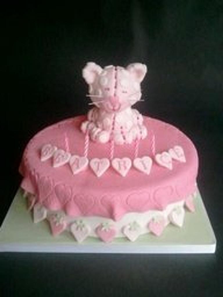 Strawberry Shortcake' Cat Custard by Tracey