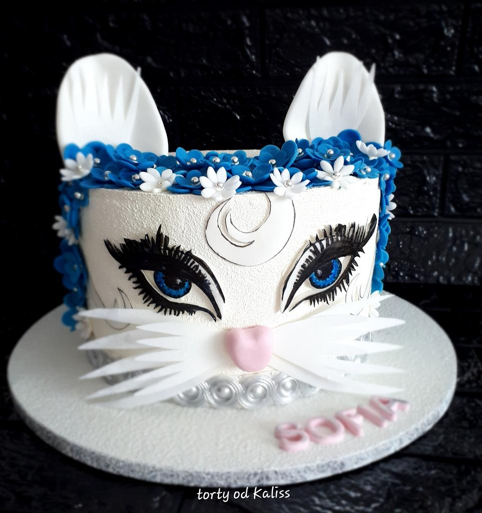 Birthday cat by Kaliss