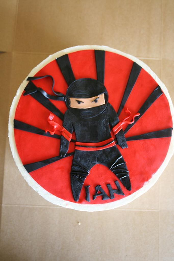 Ninja Cake by Rachel Skvaril