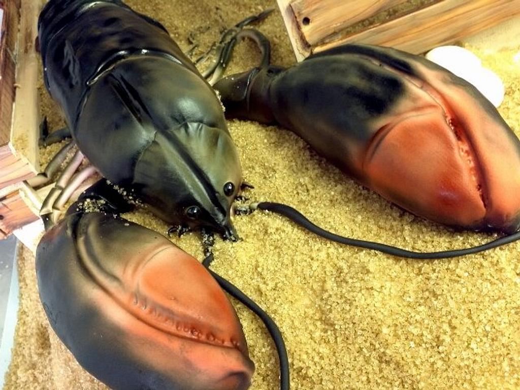 Lobster by Elyse Rosati