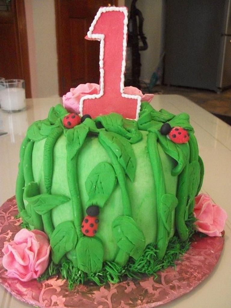 ladybug cake Enchanted Cakes by Sher