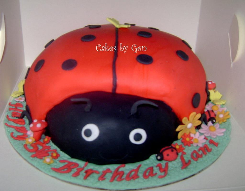 Pretty Ladybird Cake by Gen