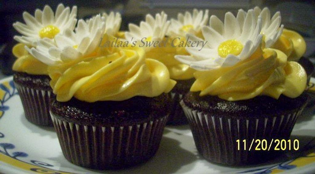Yellow Daisy Cupcakes by Lailaa
