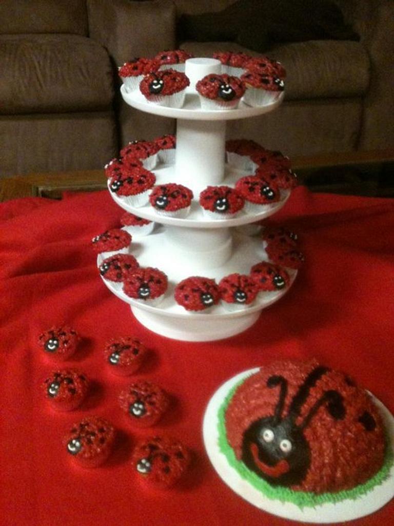 Lady Bug Smash cake and mini cupcakes by Teresa James