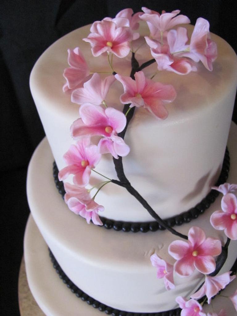 Apple Blossom Wedding Cake by Jennifer Watson