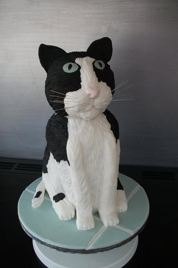 Cat cake by Lyndsey Statham
