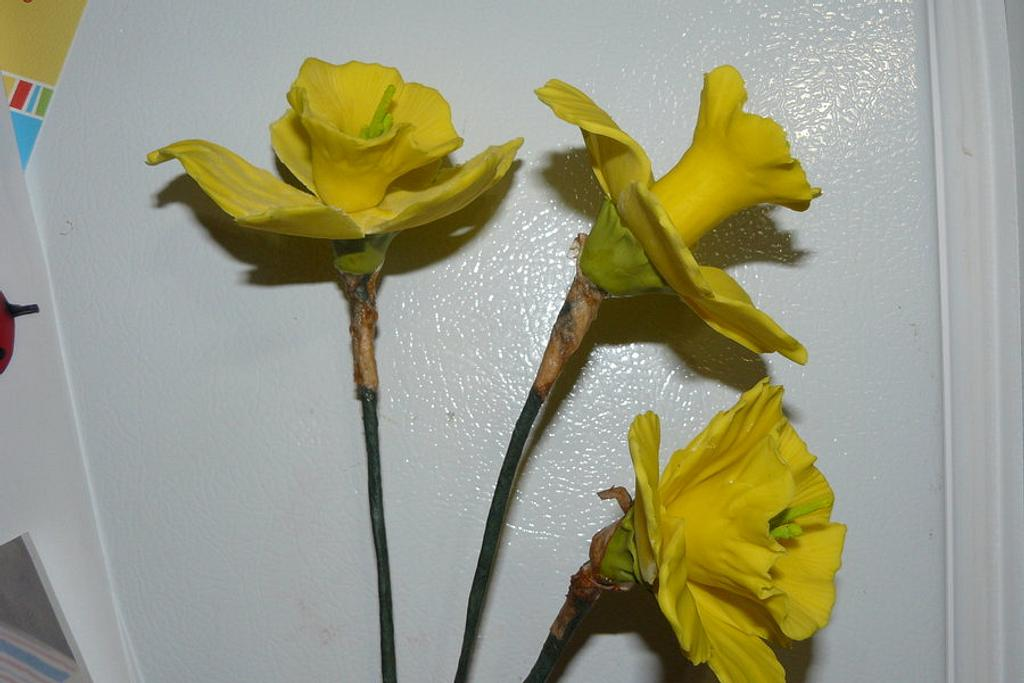 my first  SUGAR DAFF'S / MOTHERS DAY FLOWERS by gail