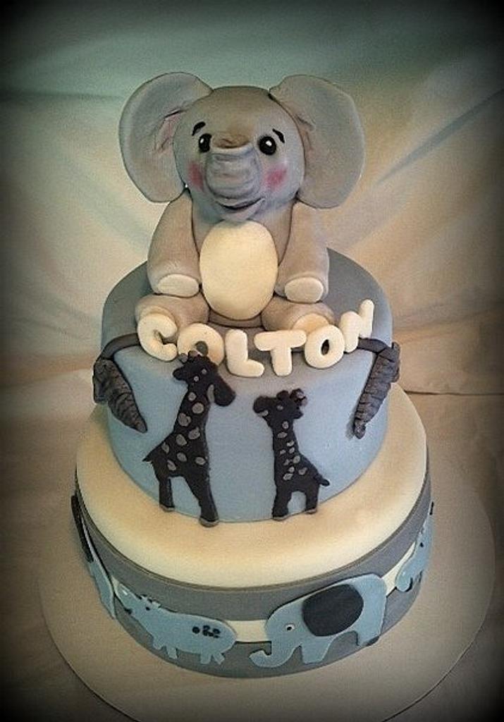 Blue Gray Safari Baby Shower Cake by Angel Rushing