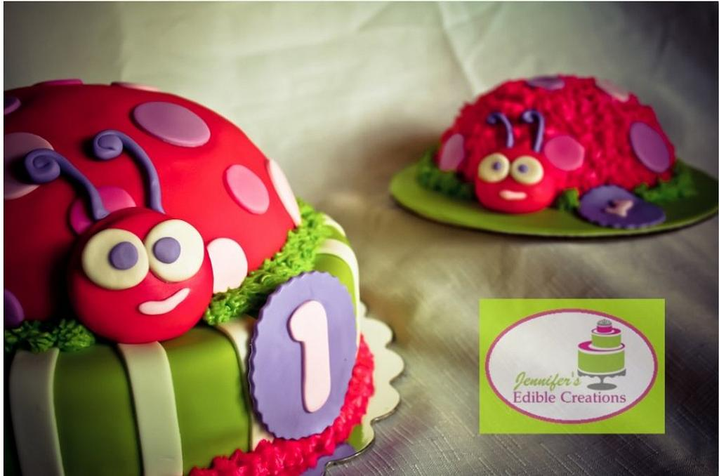 Lady Bug with Smash Cake for First B-Day by Jennifer's Edible Creations