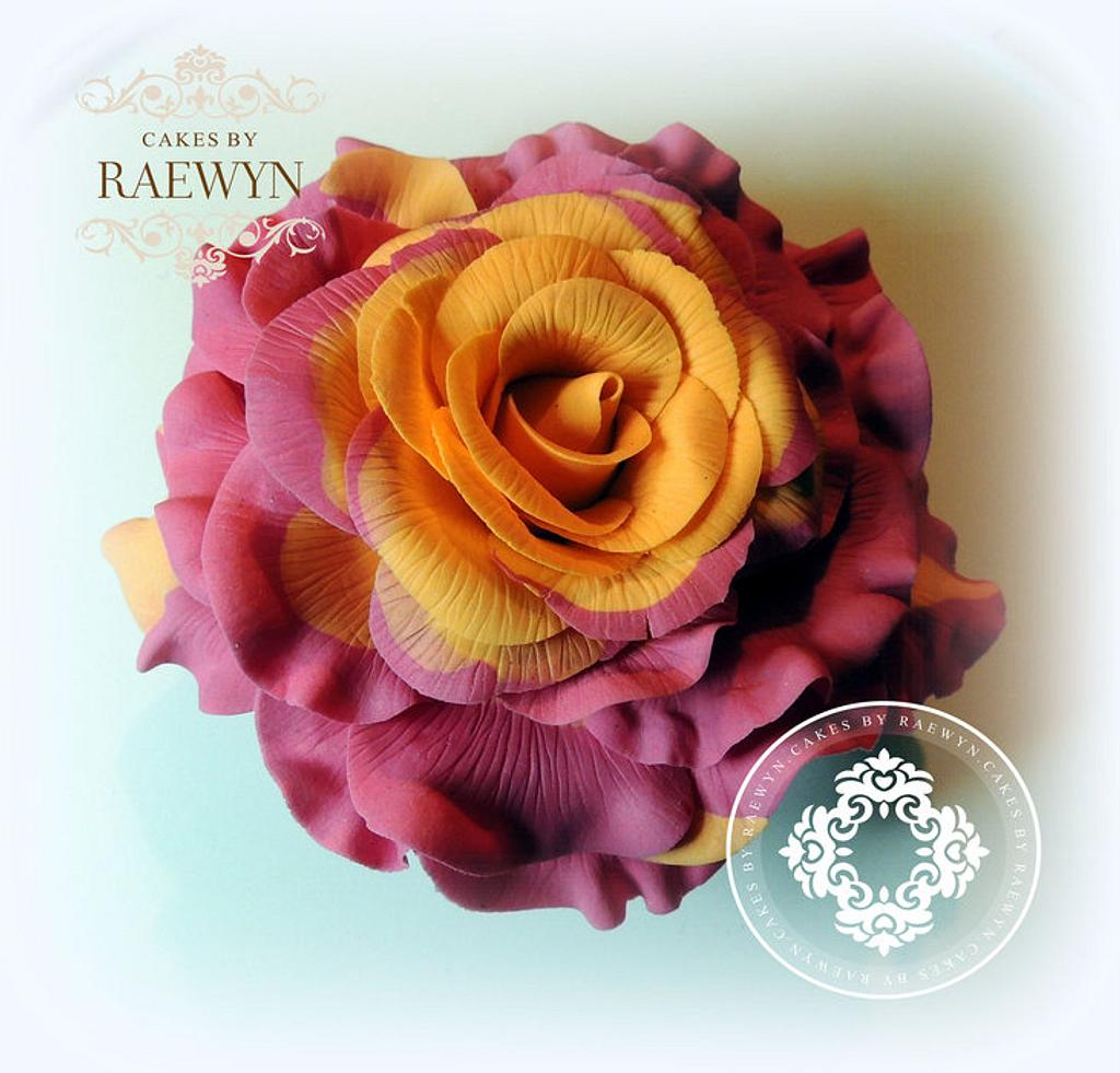 Bi Colour Rose by Raewyn Read Cake Design