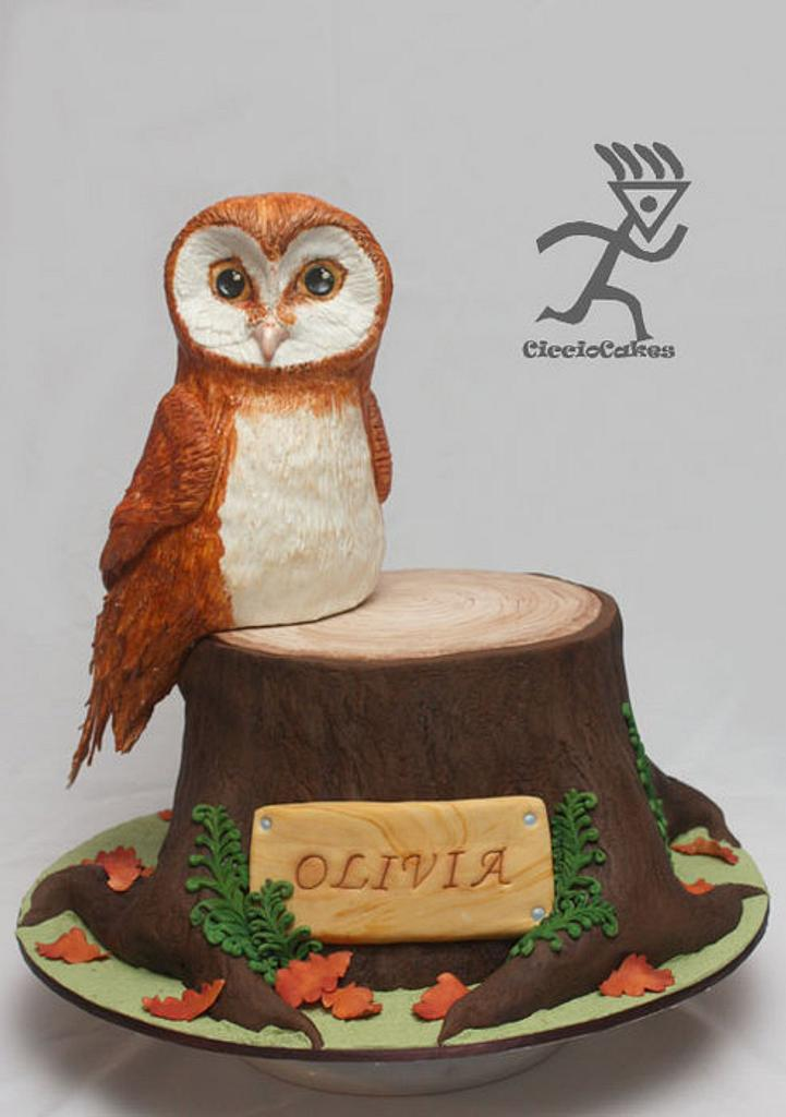 Soren from Legends of the Guardians Owl Cake all edible by Ciccio