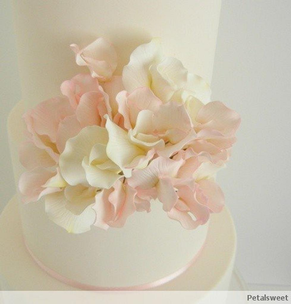 Pink and White Sweet Peas by Petalsweet