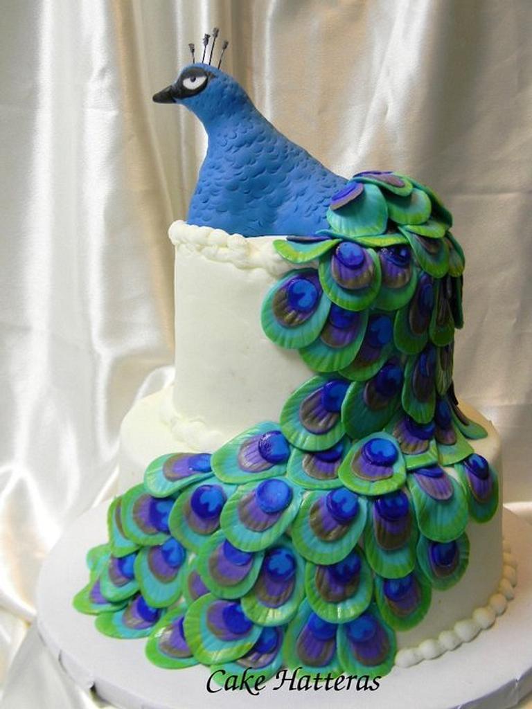 Peacock by Donna Tokazowski- Cake Hatteras, Hatteras N.C.