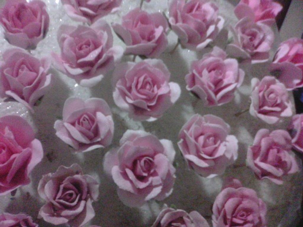 Roses by Vinu_d