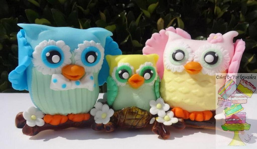Family Of Owls  by Yari