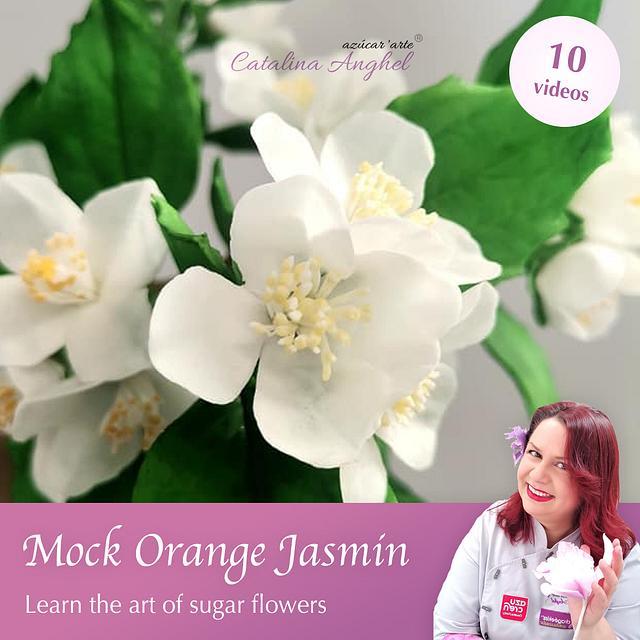 Free-Formed Sugar Mock Orange Jasmin (Philadelphus) - Course by Catalina Anghel azúcar'arte