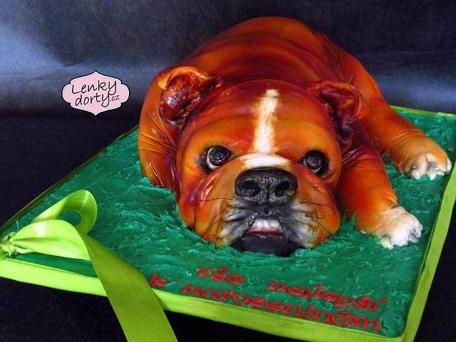 Buldog 3D cake