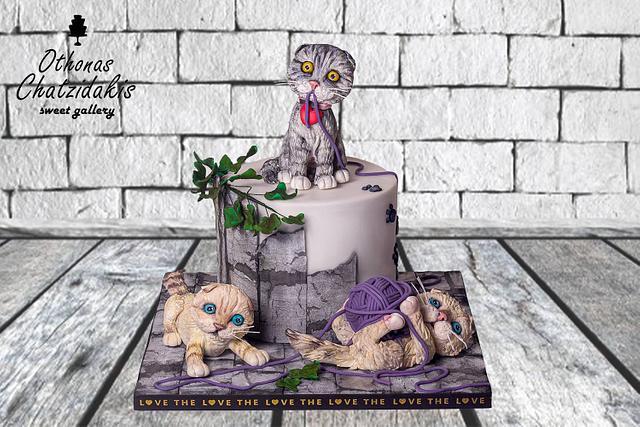 Scottish fold Cat Cake