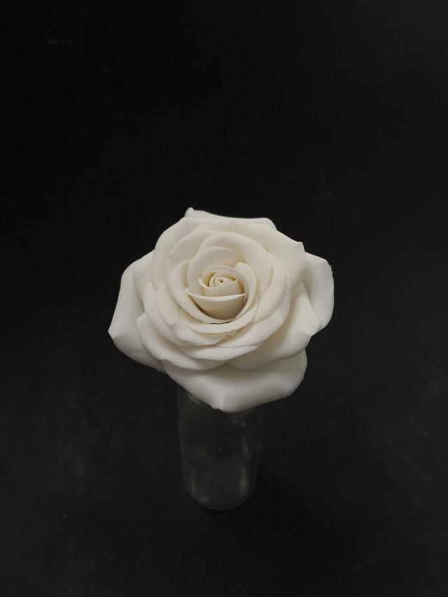 Juste one white rose