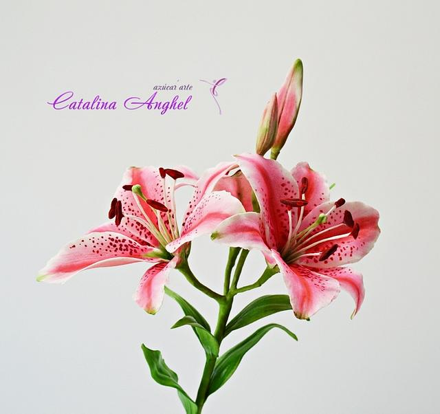 """Starglazer Lilly- botanical correct free-formed sugar plant- 3rd lesson on """"Le Must"""" class"""