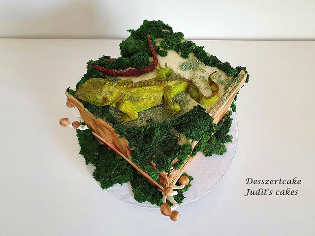 Iguana cake