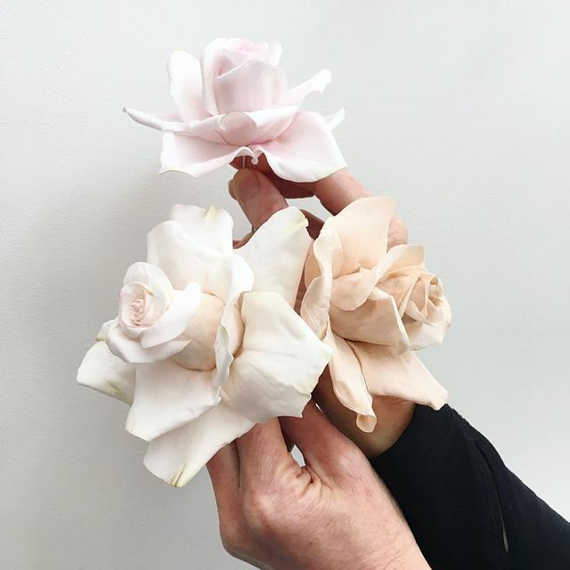 Large Sugar Roses