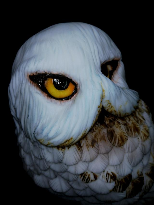 Hedwig of Harry Potter