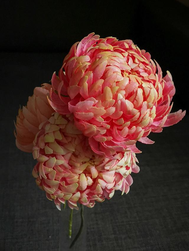 Wafer paper Chrysanthemum a