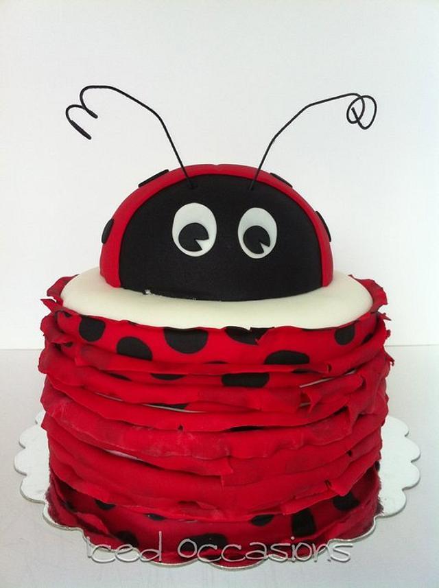 Awesome Ladybug 1St Birthday Cake Cake By Morgan Cakesdecor Birthday Cards Printable Giouspongecafe Filternl